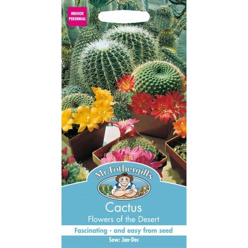 Seminte CACTUS Flowers of the Desert - Amestec de cactusi
