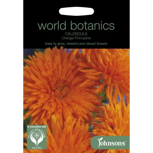 Seminte CALENDULA officinalis Orange Porcupine - Galbenele