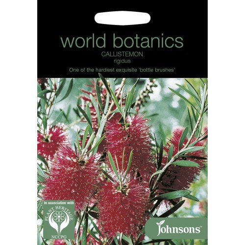 Seminte CALLISTEMON rigidus - Spalator de sticle - arbust