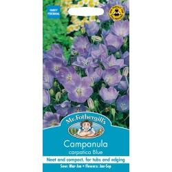 Seminte CAMPANULA carpatica Blue - Clopotei