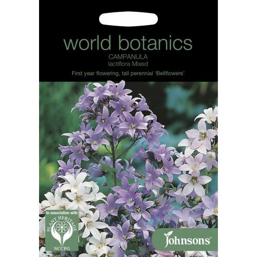Seminte CAMPANULA lactiflora Mixed Bellflowers - Clopotei
