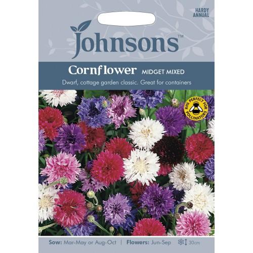 Seminte CENTAUREA Cornflower Midget Mixed - Albastrele pitice amestec