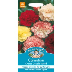 Seminte DIANTHUS  Choice Double Mixed - Garofite