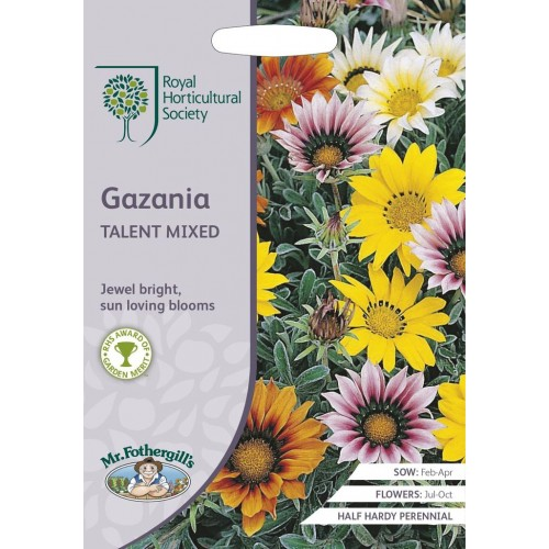 Seminte GAZANIA splendens Talent Mixed-Gazania
