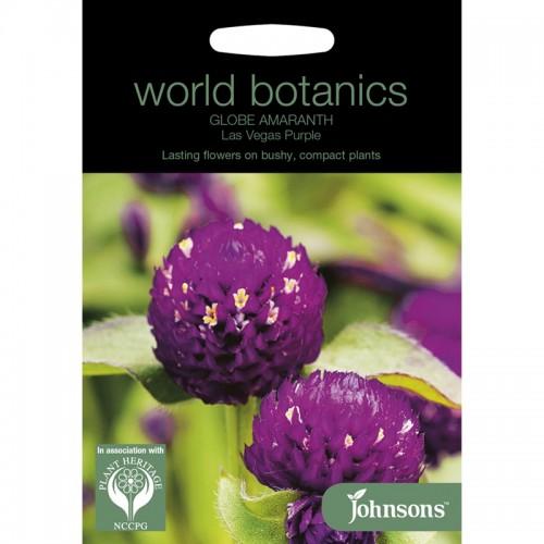 Seminte GOMPHRENA globosa-Globe Amaranth- Las Vegas Purple-Statice
