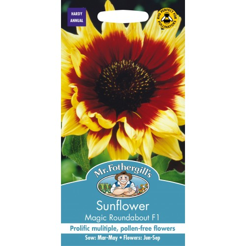 Seminte HELIANTHUS annuus-Sunflower- Magic Roundabout F1 - Floarea Soarelui
