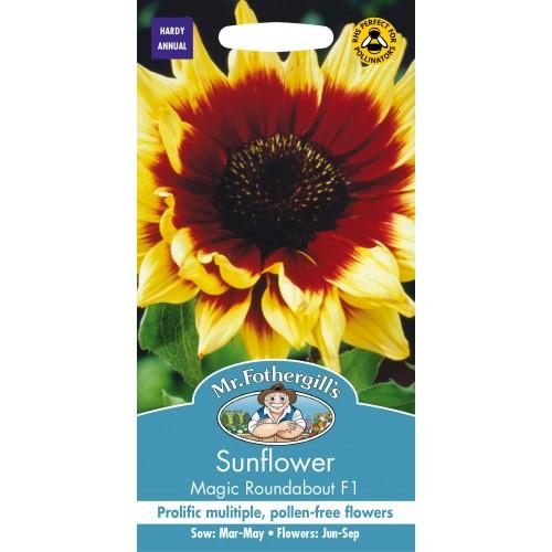 Seminte HELIANTHUS annuus-Sunflower- Magic Roundabout F1 - Floarea Soarelui