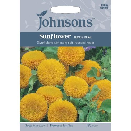 Seminte HELIANTHUS annuus-Sunflower- Teddy Bear - Floarea Soarelui pitica