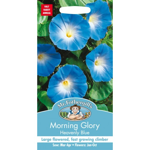 Seminte IPOMOEA tricolor Heavenly Blue - Zorele