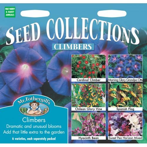 Seminte IPOMOEA - Climbing Collection - 6 soiuri de plante urcatoare