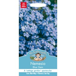 Seminte NEMESIA versicolor Blue Gem - Nemesia flori albastre