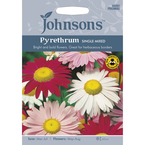 Seminte PYRETHRUM-Tanacetum coccineum- Single Mixed - Margarete colorate