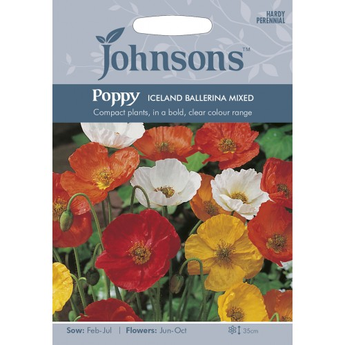 Seminte PAPAVER-Poppy- nudicaule Iceland Mixed - Mac peren