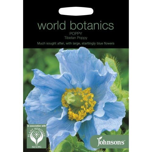 Seminte PAPAVER-Poppy- (Meconopsis) Tibetan Poppy - Mac tibetan albastru