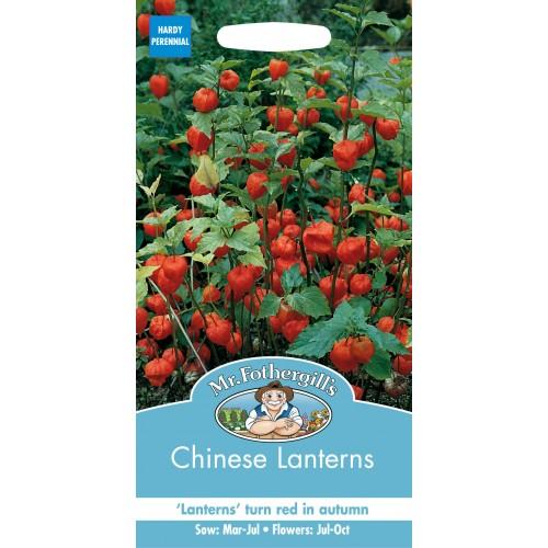 Seminte PHYSALIS  alkekengi Chinese Lanterns - Papalau