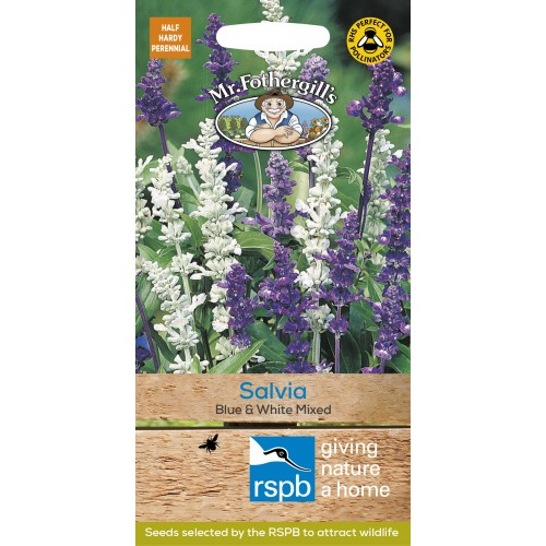 Seminte SALVIA farinacea Blue &White Mixed - Salvia decorativa
