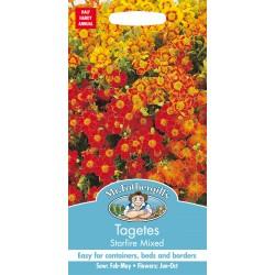 Seminte TAGETES tenuifolia Starfire Mixed - Craite melifere comestibile