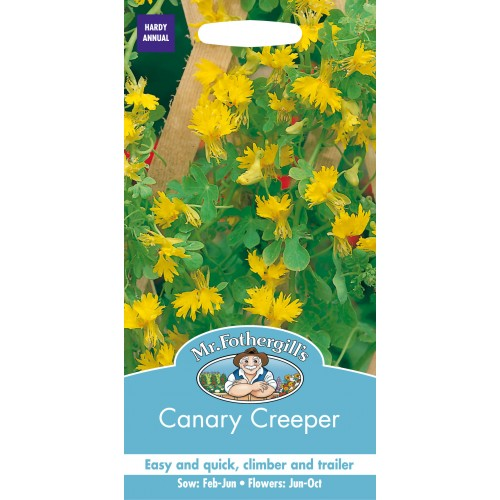 Seminte TROPAEOLUM peregrinum Canary Creeper - Caltunasi curgatori comestibili