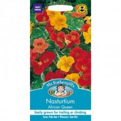 Seminte TROPAEOLUM-Nasturtium- majus African Queen - Caltunasi curgatori comestibili