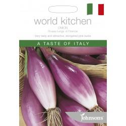 Seminte ALLIUM cepa-Onion- Rossa Lunga di Firenze - Ceapa roz lunga