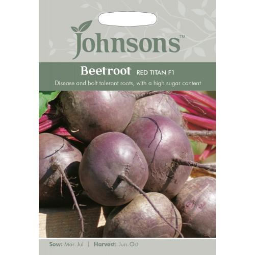 Seminte BETA vulgaris-Beetroot- Red Titan F1-Sfecla de masa rezistenta la boli