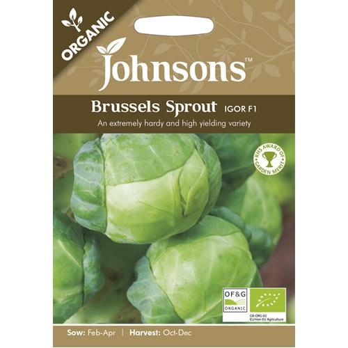 Seminte BRASSICA-Brusseles- oleracea gemmifera Igor F1 ORG-Varza de Bruxelles verde, seminte organice