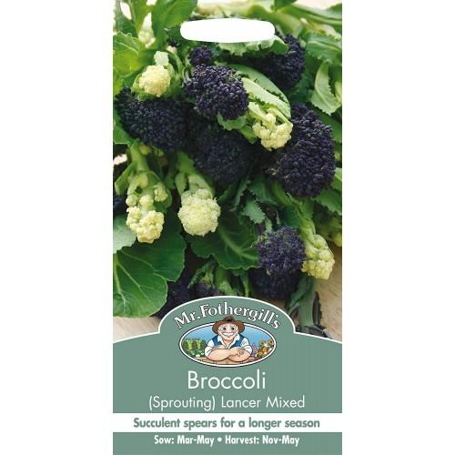 Seminte BRASSICA-Broccoli- oleracea italica Lancer Mix-Broccoli mix