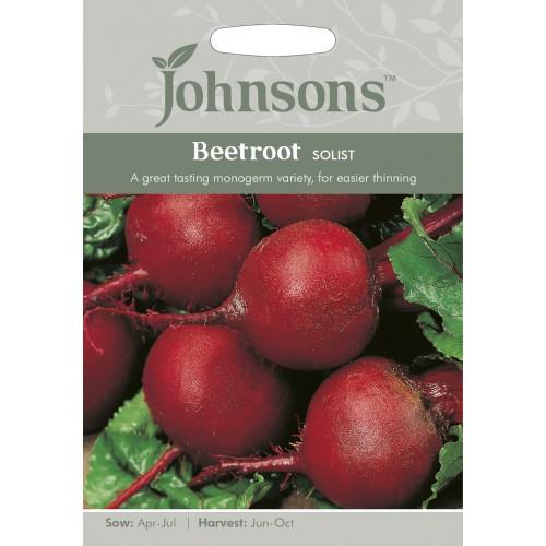 Seminte BETA vulgaris-Beetroot- Solist  - Sfecla de masa, monogerma, unul dintre cele mai dulci soiuri