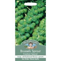 Seminte BRASSICA oleracea Evesham Special - Varza de Bruxelles verde