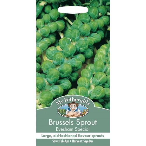 Seminte BRASSICA-Brusseles- oleracea Evesham Special - Varza de Bruxelles verde
