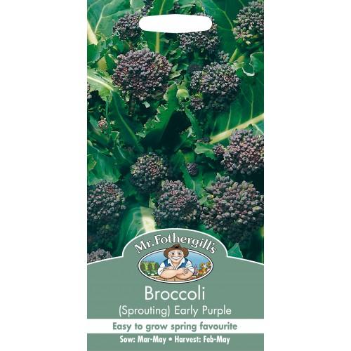 Seminte BRASSICA-Broccoli- oleracea italica Early Purple - Broccoli mov timpuriu