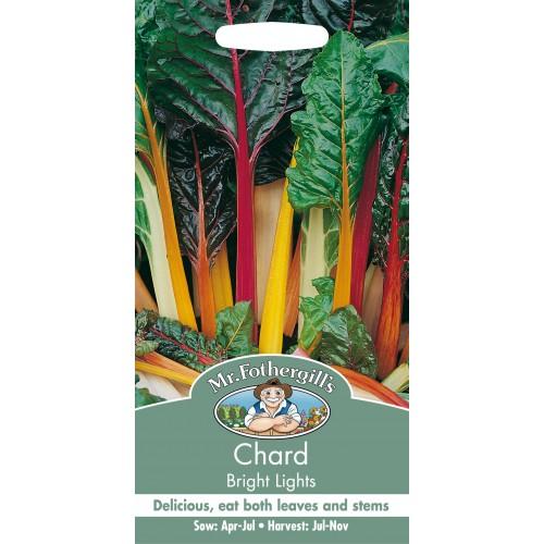 Seminte BETA vulgaris-Chard- Bright Lights - Sfecla de petiol-Mangold, amestec