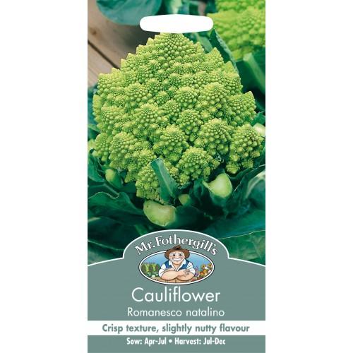 Seminte BRASSICA-Cauliflower- oleracea botrytis Romanesco natalino - Conopida conica, verde