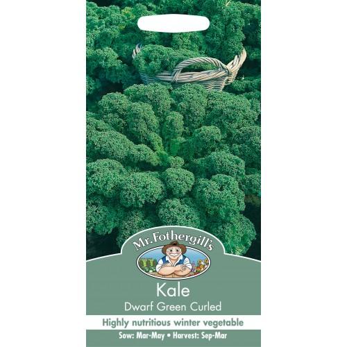 Seminte BRASSICA-Kale- oleracea acephala Dwarf Green Curled - Varza de frunze, verde