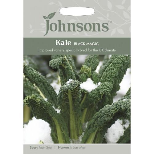 Seminte BRASSICA-Kale- oleracea acephala Black Magic - Varza de frunze, neagra, rezistenta la ger