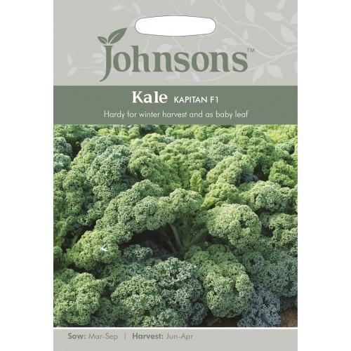 Seminte BRASSICA-Kale- oleracea acephala Kapitan F1 - Varza de frunze,  rezistenta la frig, pt baby-leaf