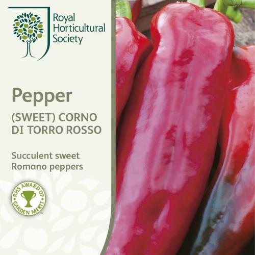 Seminte CAPSICUM annuum-Sweet Pepper-Corno di Torro Rosso - Ardei capia rosu