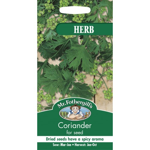 Seminte CORIANDRUM sativum -for seeds - Coriandru de seminte