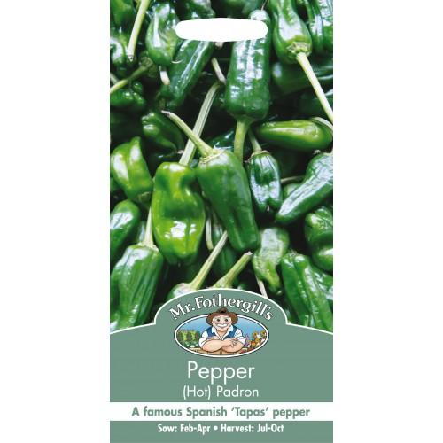 Seminte CAPSICUM annuum-Hot Pepper-Padron - Ardei iute