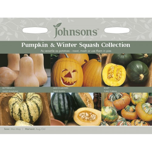 Seminte CUCURBITA-Pumpkin & Winter Squash Collection - Colectie dovleci -6 soiuri ambalate separat