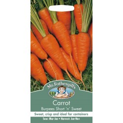 Seminte DAUCUS carota Burpees Short n Sweet - Morcov dulce, pentru soluri sarace