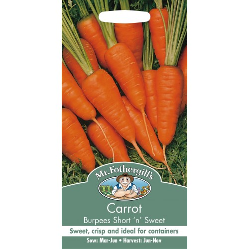 Seminte DAUCUS carota-Carrot-Burpees Short n Sweet - Morcov dulce, pentru soluri sarace