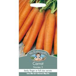 Seminte DAUCUS carota Nantes 5 - Morcov dulce, timpuriu