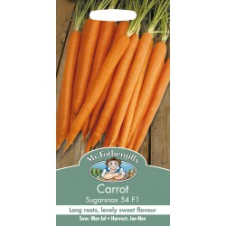 Seminte DAUCUS carota Sugarsnax 54 F1 - Morcov dulce, radacini lungi, rezistent la boli