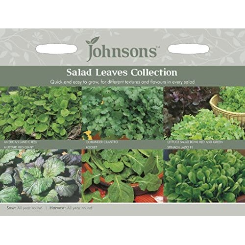 Seminte LACTUCA -COLLECTION Salad Leaves (creson,coriandru,salata,mustar,rucola,spanac)