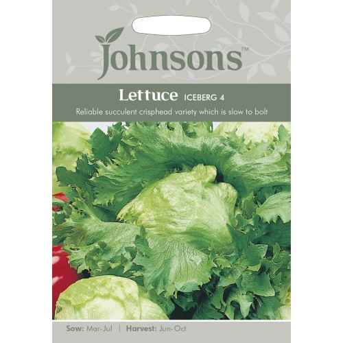 Seminte LACTUCA sativa-Lettuce-Iceberg 4 - Salata tip iceberg