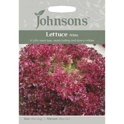 Seminte LACTUCA sativa-Lettuce-Feska - Salata creata rosie tip Lollo