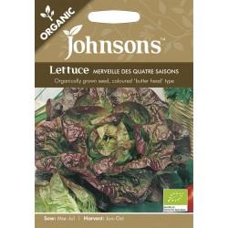 Seminte LACTUCA sativa-Lettuce-Merveille des Quatre Saisons - Salata-căpățână tip Butterhead, verde cu bordura rosie (seminte organice)