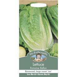 Seminte LACTUCA sativa-Lettuce-Romaine Ballon - Salata tip Cos, lunguiata