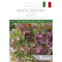 Seminte LACTUCA sativa Rosa di Trento - Salata tip Butterhead, verde cu bordura rosie